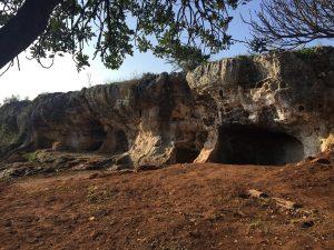 Limpeza de cuevas de las carretas