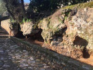 Limpeza de cuevas de las carretas 5