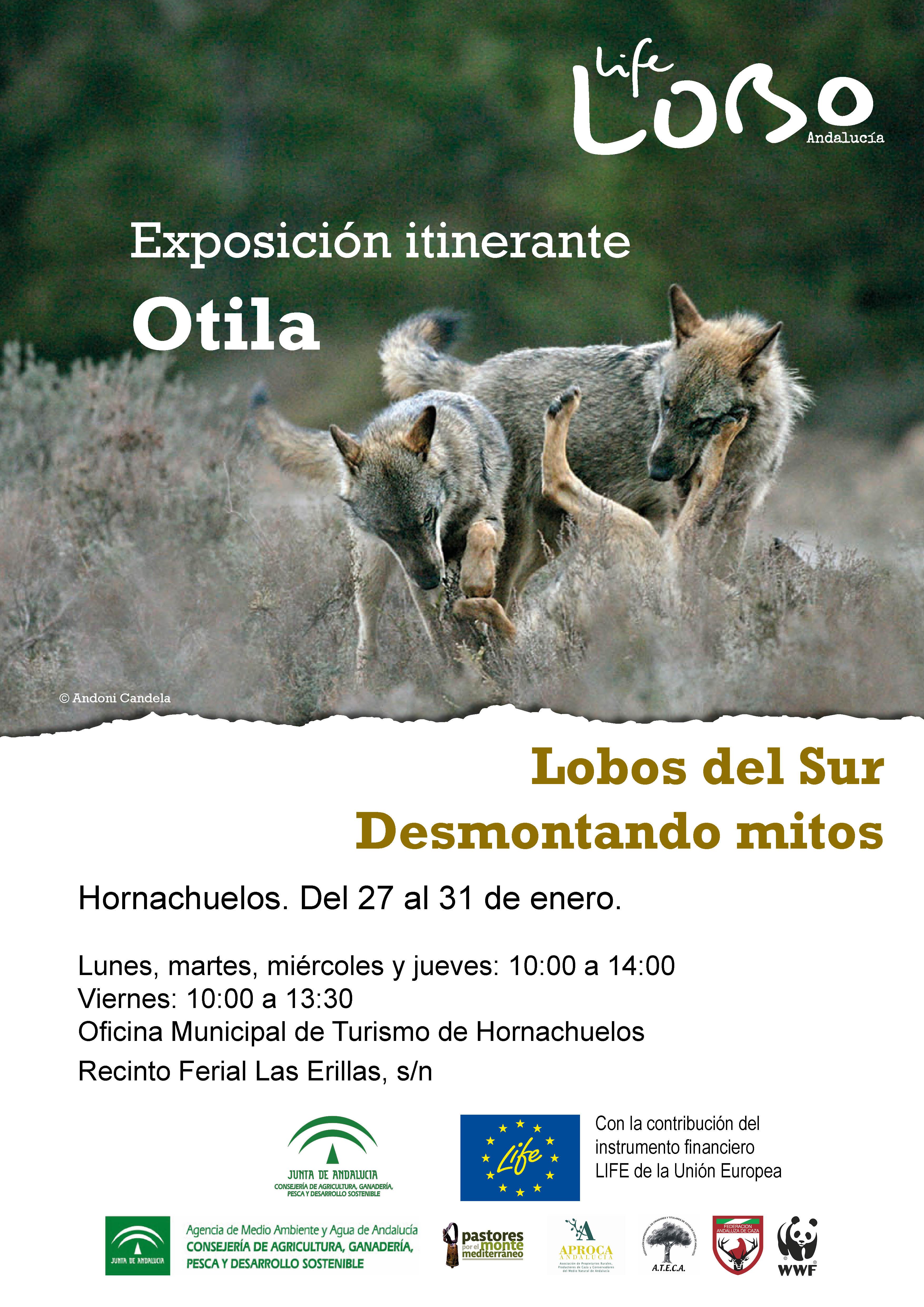 Exposición Otila.