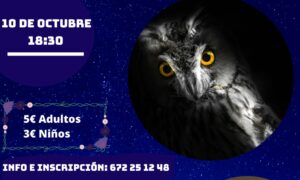 Hornitural Berrea 10