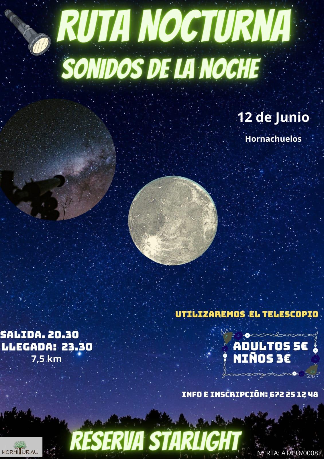 Ruta Nocturna Hornitural