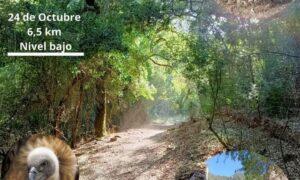 Ruta de Senderismo Guadalora